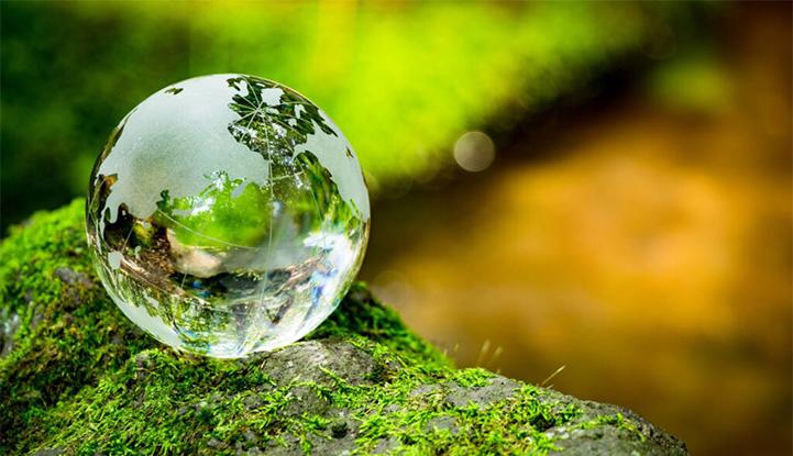 Glaskula på en mossig sten