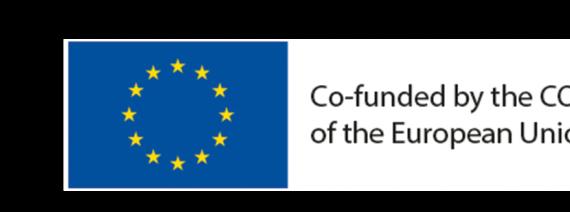Logotyp för Tex4Im och EU-programmet COSME